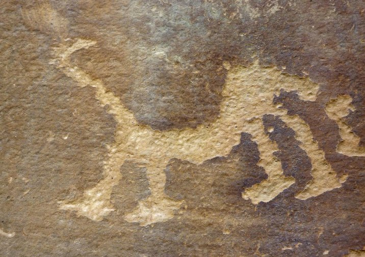 Along Petroglyph Point Trail in Mesa Verde National Park near Durango, Colorado.