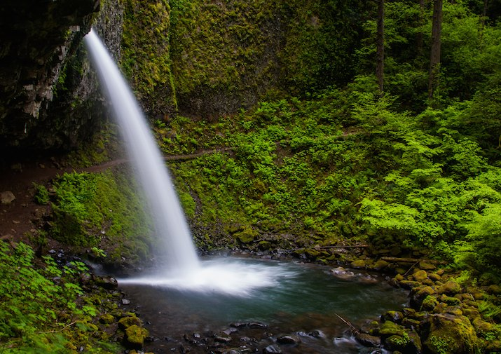 Ponytail Falls in the Columbia River Gorge National Scenic Area near Portland, Oregon.