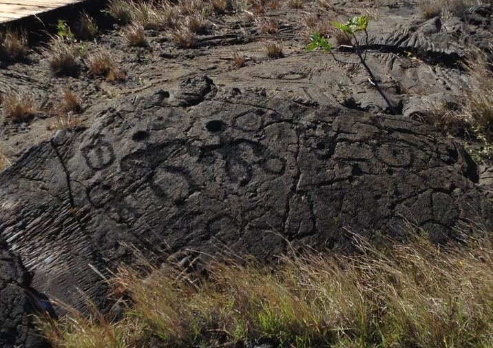 Ancient rock art along the Pu'u Loa Trail in Hawaii Volcanoes National Park.
