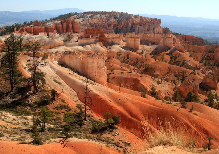 Along the Queens Garden Trail in Bryce Canyon National Park.