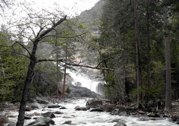 Looking towards raging Rancheria Falls in Yosemite National Park.