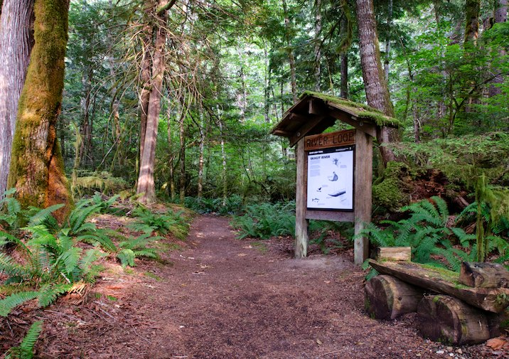 River Loop Trailhead in North Cascades National Park.