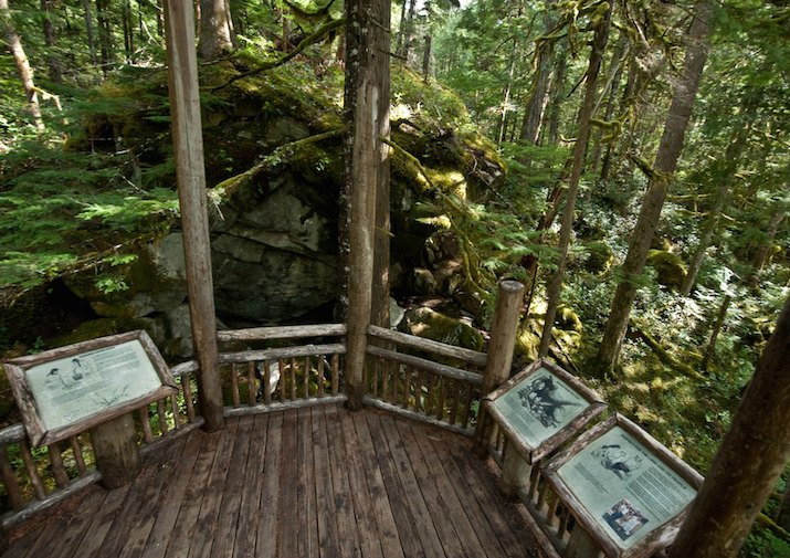 Rock Shelter Trail in North Cascades National Park.