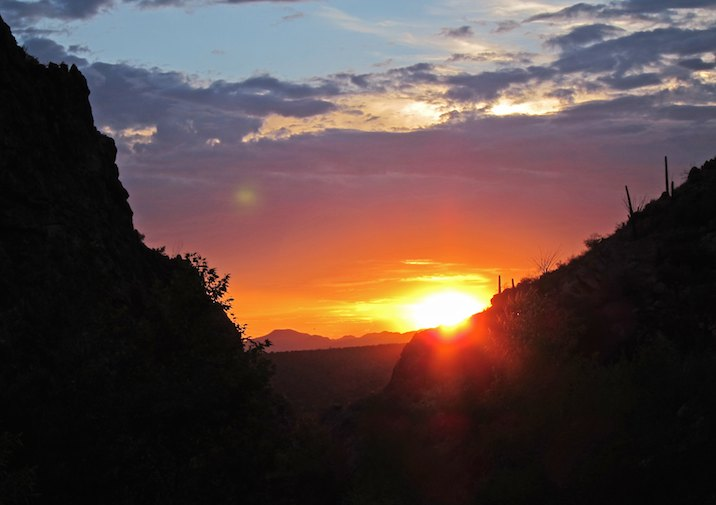 Sunset along the Romero Canyon Trail in Catalina State Park near Tucson
