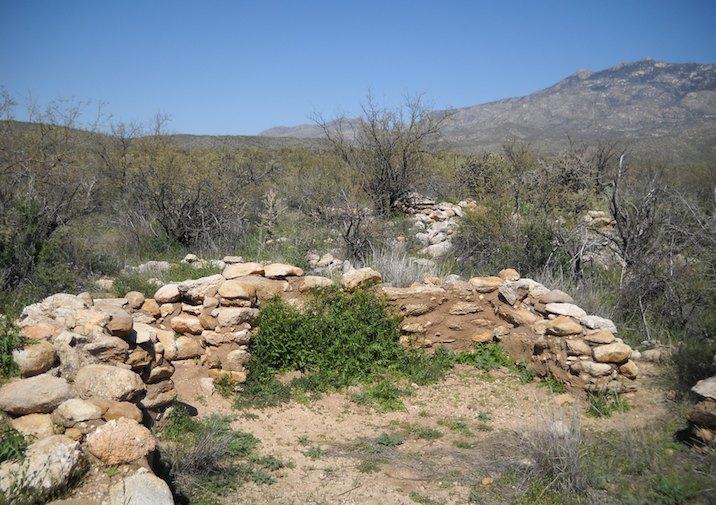 Along the Romero Ruin Interpretive Trail in Catalina State Park near Tucson