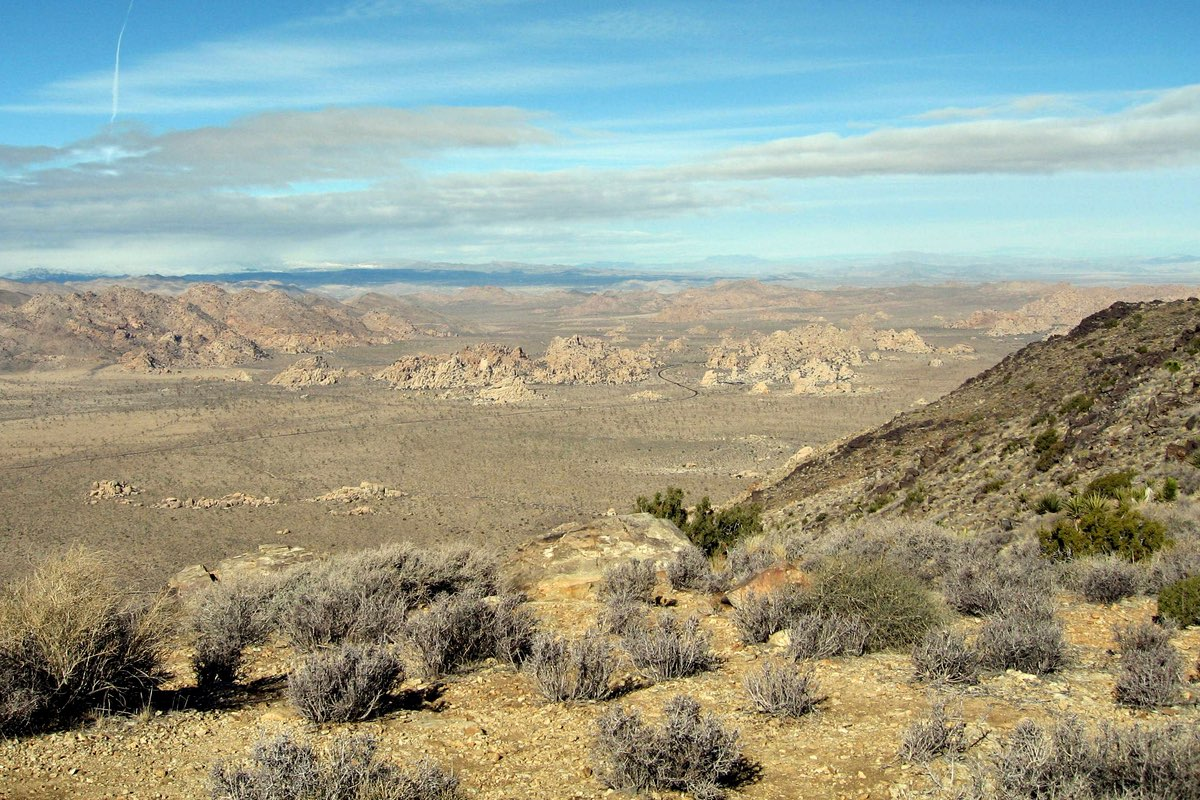 Looking towards Hidden Valley from Ryan Mountain.