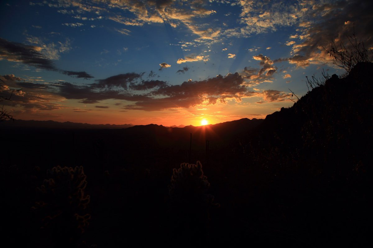 Sunset in Saguaro National Park near Tucson.