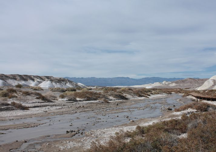 Salt Creek Interpretive Trail in Death Valley National Park, California.