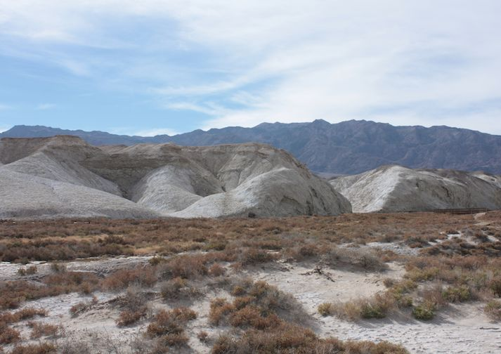 View along the short and scenic Salt Creek Interpretive Trail.