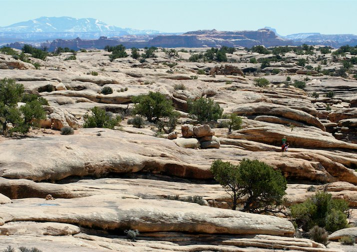 Chesler Park in Canyonlands National Park.