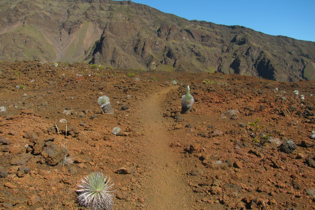 Silversword Loop in Haleakala National Park.