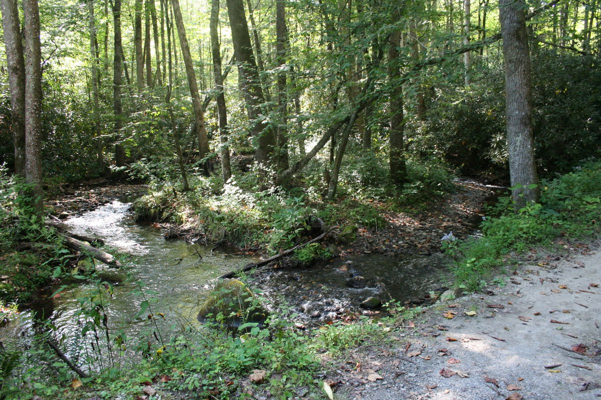 Hiking the Smokemont Nature Loop Trail in Great Smoky Mountains National Park.