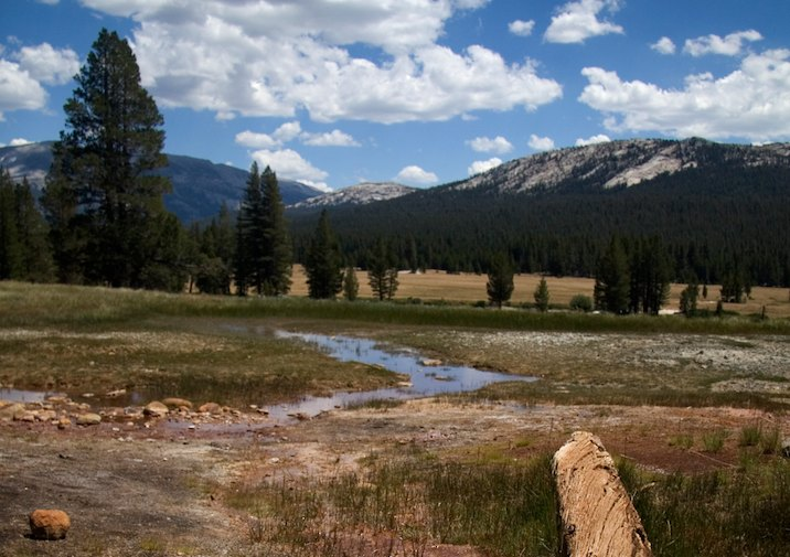 Soda Springs in Yosemite National Park, CA.