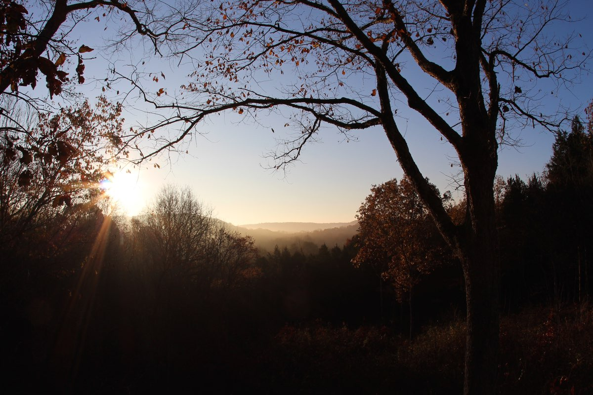 Sunrise in Mammoth Cave National Park.