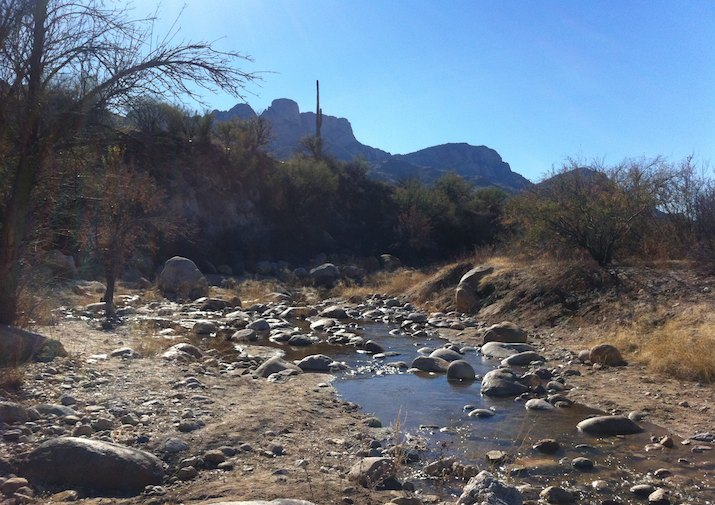 Sutherland Trail in Catalina State Park near Tucson