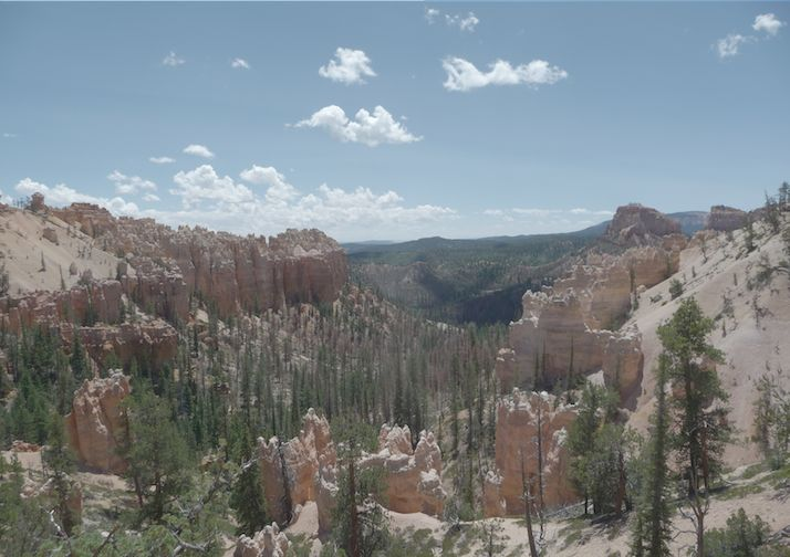 Looking into Swamp Canyon in Bryce Canyon National Park.