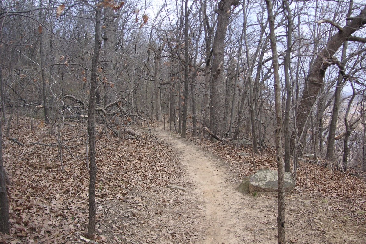 Hiking Turkey Mountain near Tulsa Oklahoma.