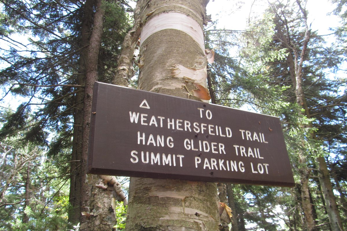 Weathersfield Trail sign in Mt. Ascutney State Park.