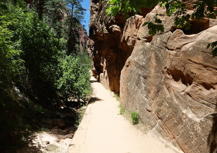 Hiking the West Rim Trail in Zion National Park.