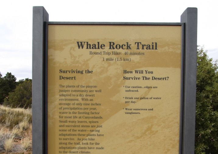 Whale Rock trail sign in Canyonlands National Park.