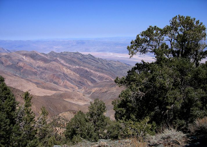 View from Wildrose Peak Trail in Death Valley National Park.