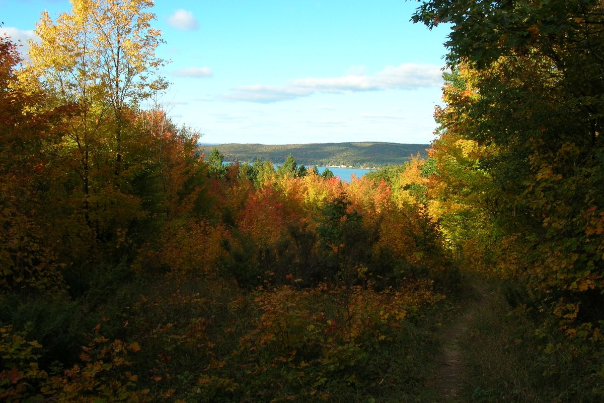Fall Foliage along the Windy Moraine Trail in Sleeping Bear Dunes National Lakeshore.