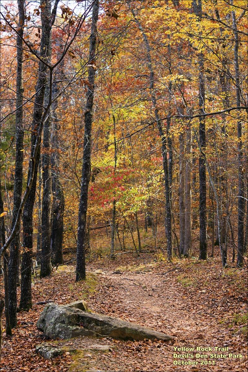 Hiking the Yellow Rock Trail in Devil's Den State Park, Arkansas.