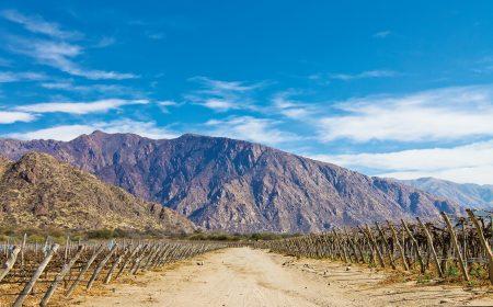 Valle de Cafayate