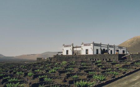 Bodegas vitivinícolas de belleza insólita