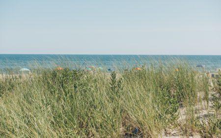 Los Hamptons en verano
