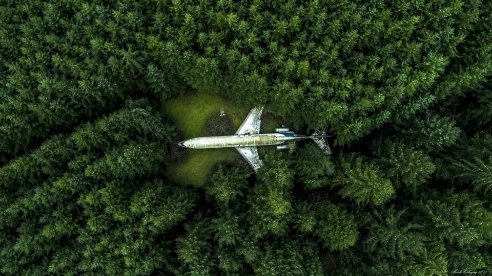 Premio Popular 8: Plane in the Forest, de Mark Calayag