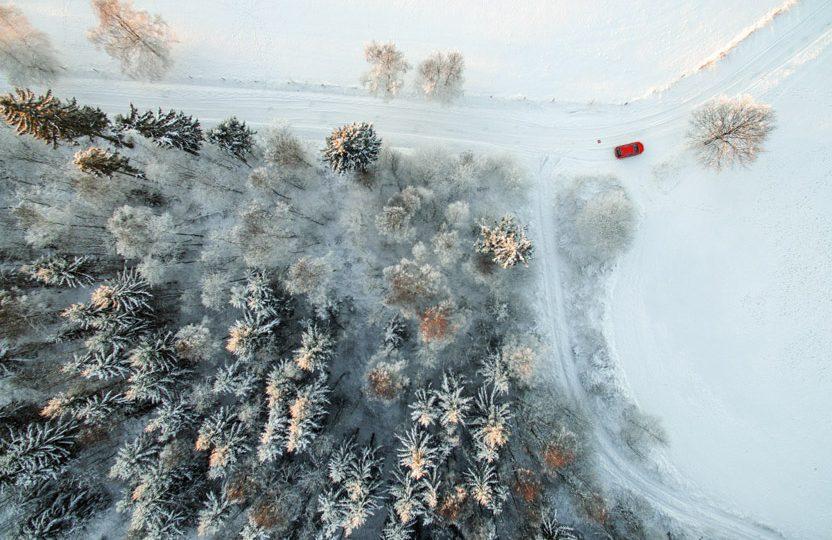 Premio Popular 9: White Wonderland, de Eberhard Ehmke