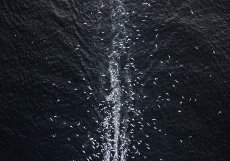 Segundo lugar en Paisaje Profesional: Comet Into Darkness, de Drone Hikers