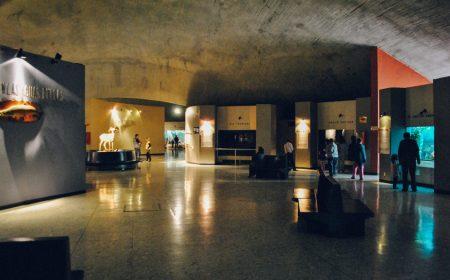 Museo de Historia Natural | Revista Travesías