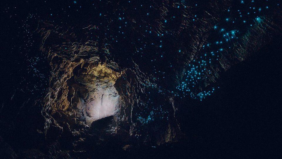 Cuevas de Waitomo, Nueva Zelanda