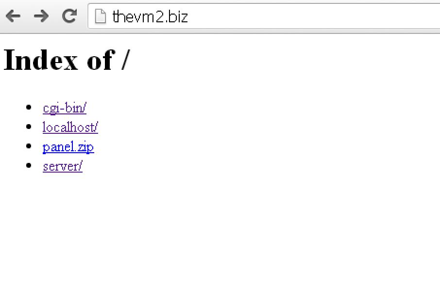 thevm2[.]biz