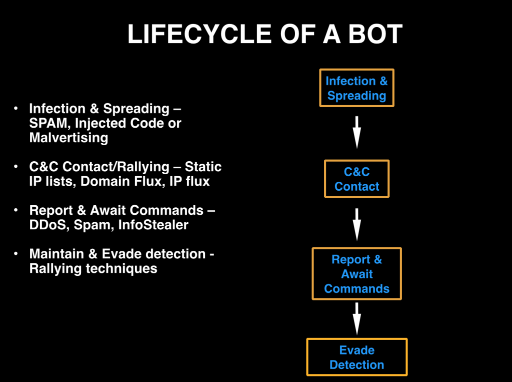 Lifecycle of a Bot