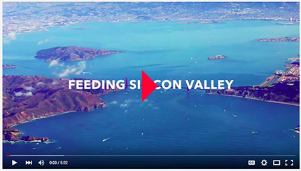 Feeding Silicon Valley
