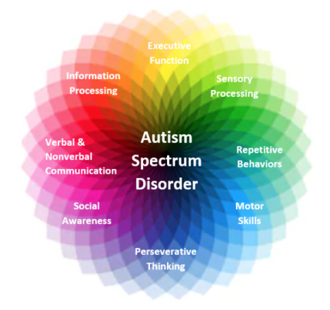 Why is Autism called Autism Spectrum Disorder? - The Carmen B. Pingree  Autism Center of Learning