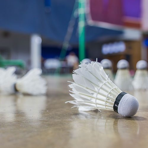 Badminton   Sports   Adults   Programs & Activities   Valley of the Sun YMCA