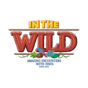 Image result for in the wild vbs