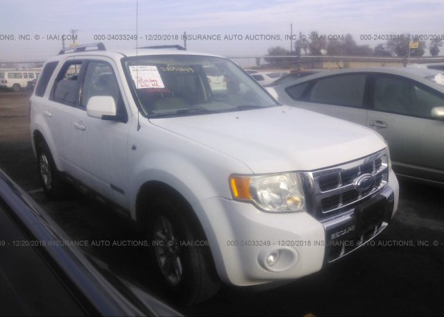 Inventory #210230830 2008 FORD ESCAPE