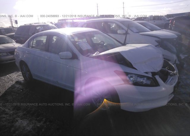 Inventory #902453679 2011 Honda ACCORD