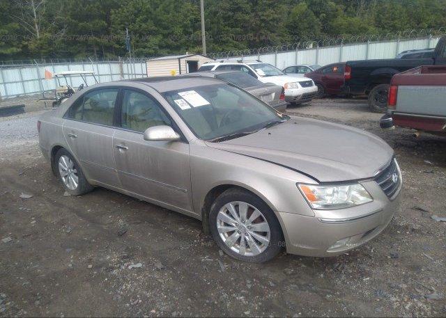 Inventory #583600313 2009 Hyundai SONATA