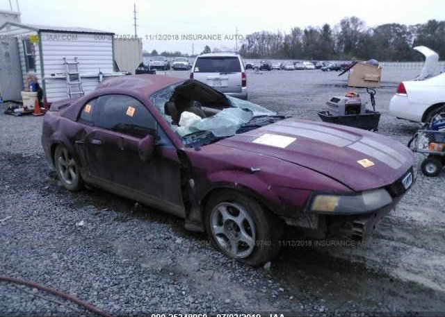 Inventory #981601292 2004 FORD MUSTANG