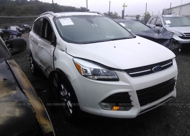 Inventory #523035118 2014 FORD ESCAPE