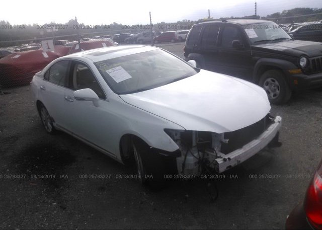 Inventory #327515033 2010 Lexus ES