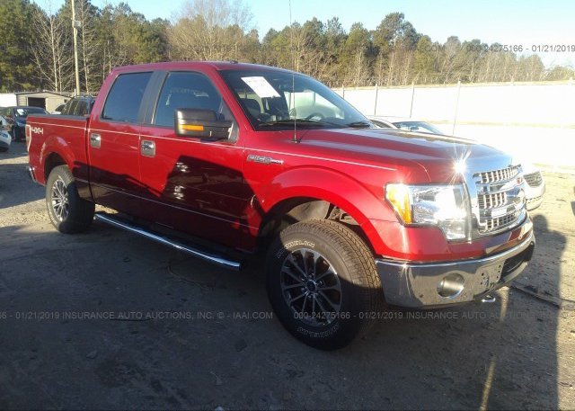 Inventory #415321016 2014 FORD F150