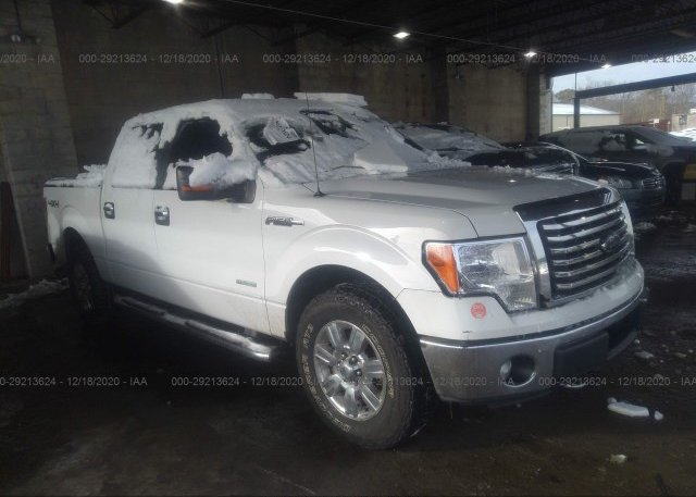1FTFW1ET0CFA51954 2012 FORD F-150