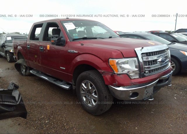Inventory #727329333 2013 FORD F150